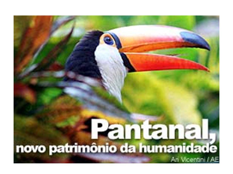 PANTANAL  Essa falta de controle sobre as atividades desenvolvidas na região e seu entorno motivaram o Banco Mundial a considerar o Pantanal como áre
