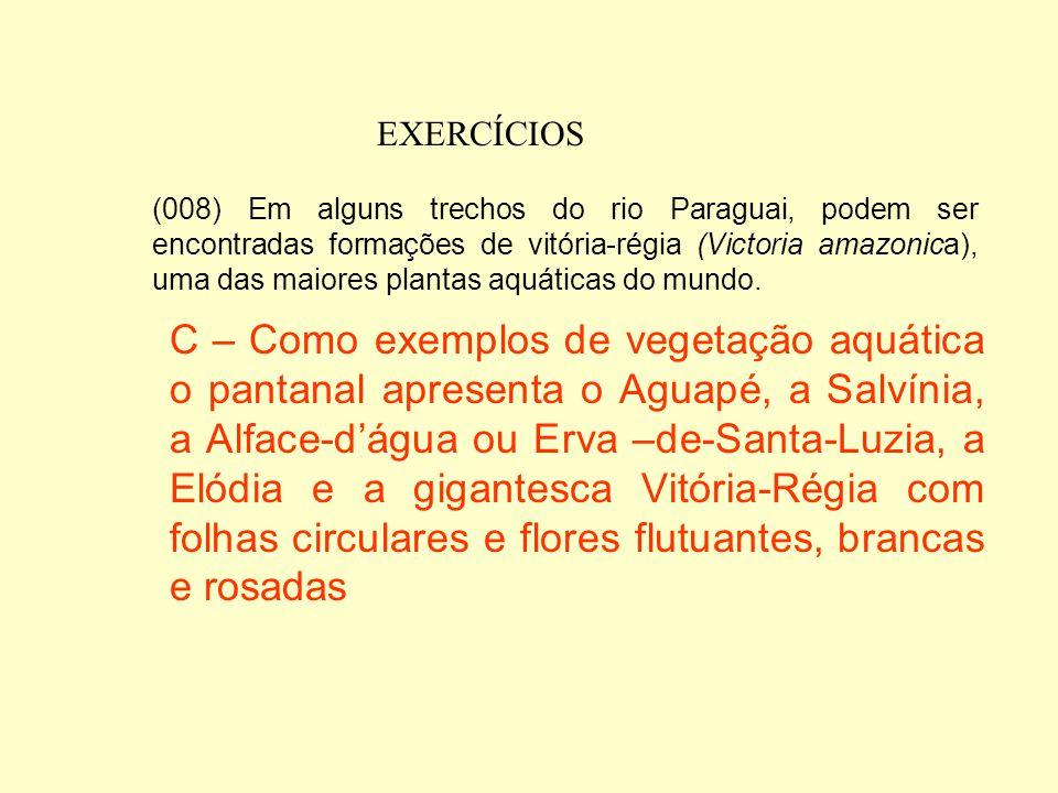 EXERCÍCIOS (004) Na planície de inundação, são encontrados freqüentemente cactos e barrigudas, representantes típicos de vegetação de áreas úmidas. E