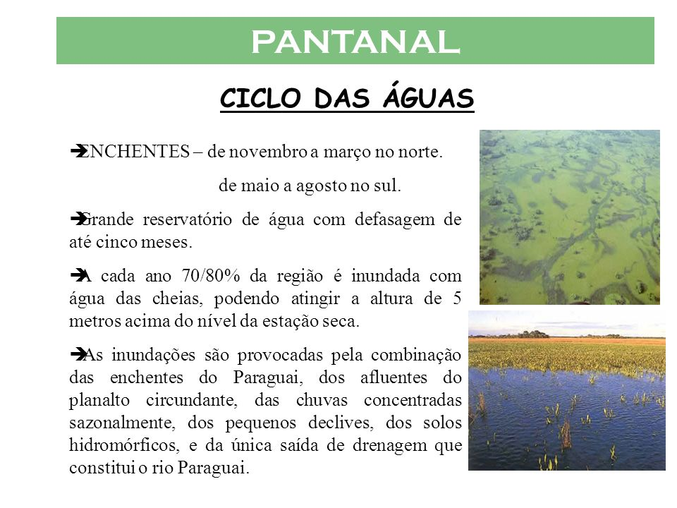 PANTANAL CICLO DAS ÁGUAS  ENCHENTES – de novembro a março no norte.