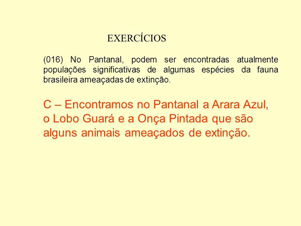 EXERCÍCIOS (008) O Pantanal se caracteriza, comparado aos demais biomas brasileiros, como aquele de mais alta taxa de endemismo de mamíferos E – a Flo