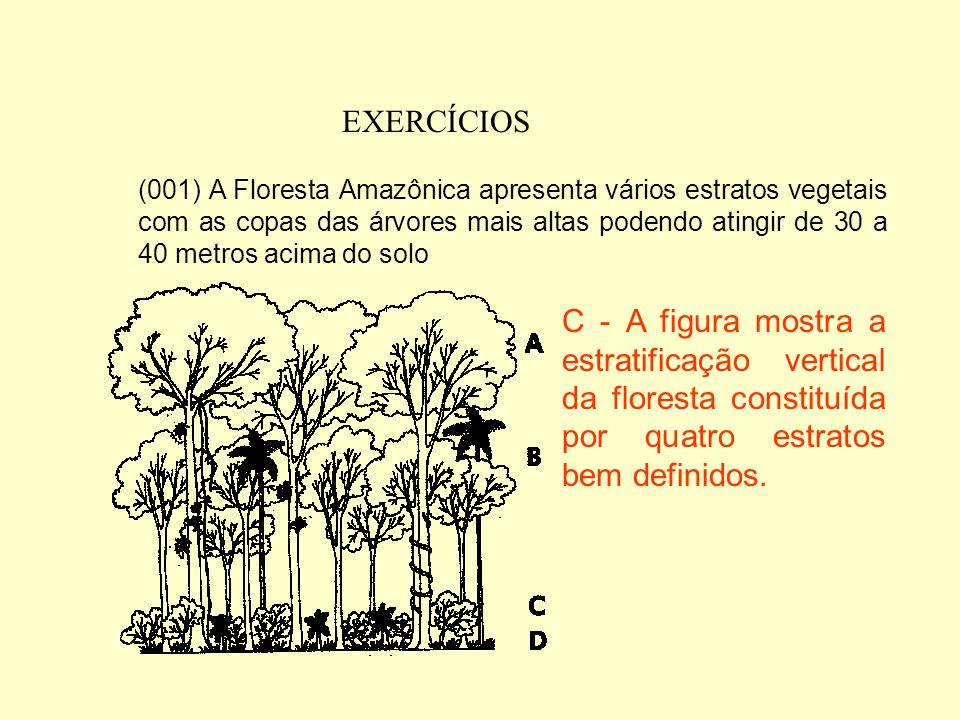 EXERCÍCIOS 5) (UFMS-2003) O Brasil apresenta diversos biomas como a Floresta Amazônica, a Mata Atlântica, o Cerrado, a Caatinga e o Pantanal Mato-Gros
