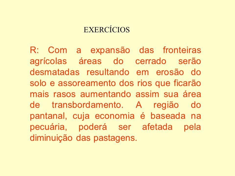 EXERCÍCIOS b) Considere os seguintes fatores: assoreamento, desmatamento das áreas de cerrado para expansão das fronteiras agrícolas, transbordamento
