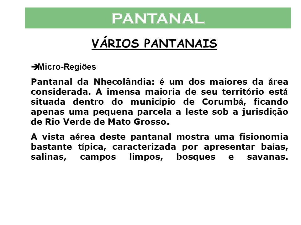 PANTANAL VÁRIOS PANTANAIS  Micro-Regiões Pantanal de C á ceres (MT) Pantanal de Pocon é (MT) Pantanal de Barão de Melga ç o (MT) Pantanal de Paiagu á