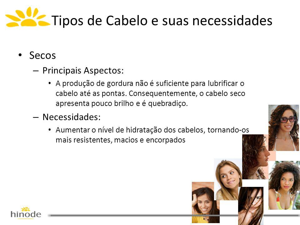 • Secos – Principais Aspectos: • A produção de gordura não é suficiente para lubrificar o cabelo até as pontas. Consequentemente, o cabelo seco aprese