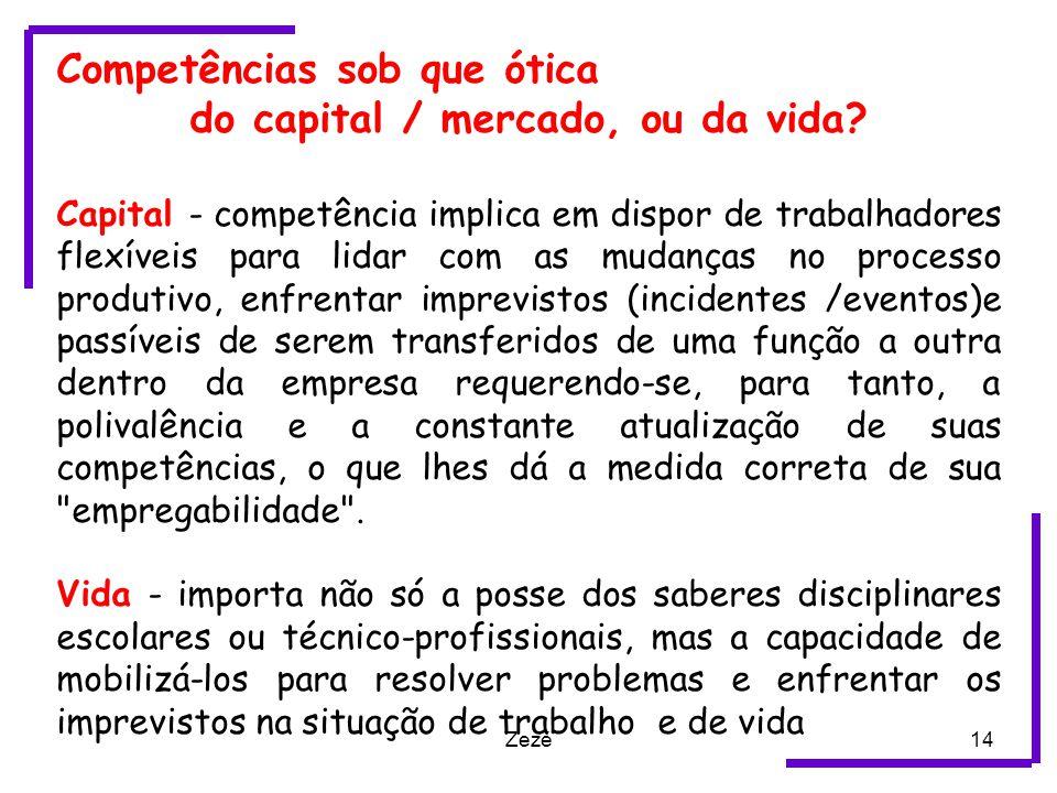 Zezé14 Competências sob que ótica do capital / mercado, ou da vida.