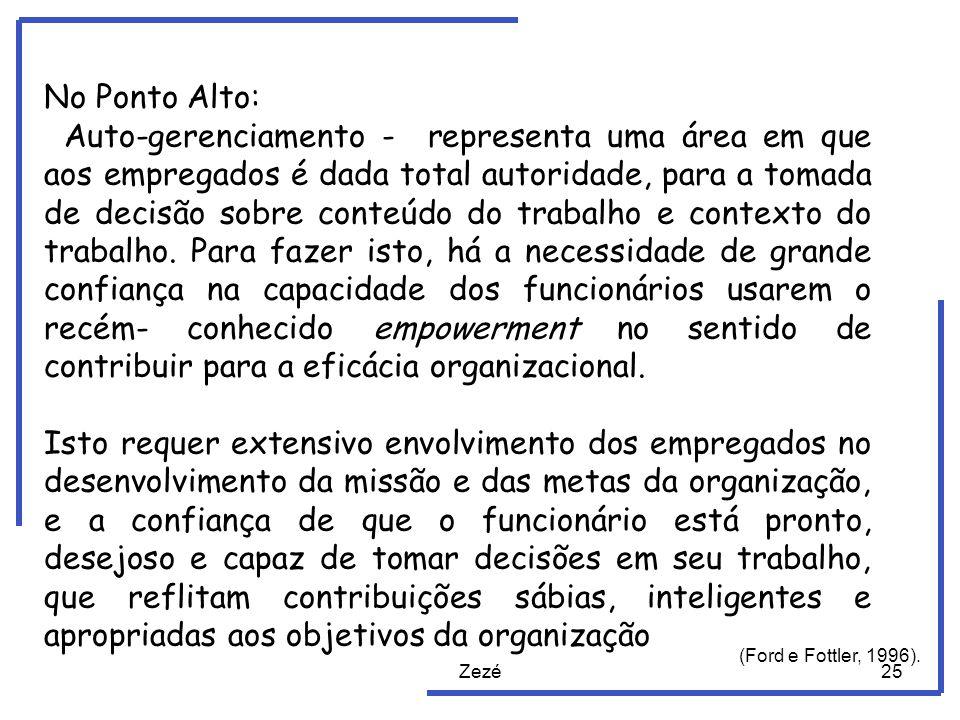 Zezé25 No Ponto Alto: Auto-gerenciamento - representa uma área em que aos empregados é dada total autoridade, para a tomada de decisão sobre conteúdo do trabalho e contexto do trabalho.