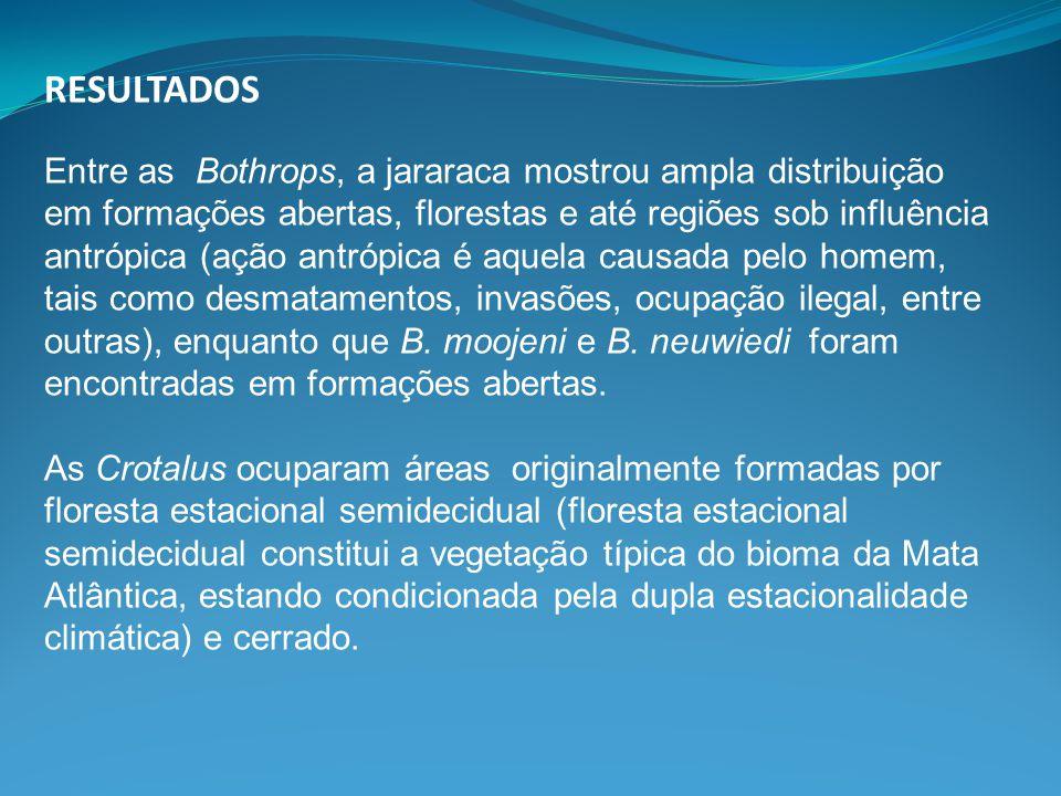 RESULTADOS Entre as Bothrops, a jararaca mostrou ampla distribuição em formações abertas, florestas e até regiões sob influência antrópica (ação antró