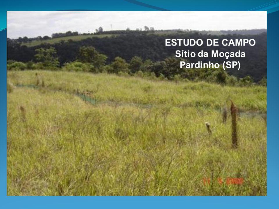 ESTUDO DE CAMPO Sítio da Moçada Pardinho (SP)