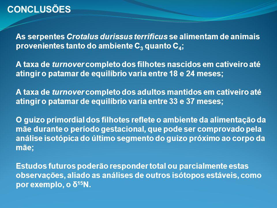 As serpentes Crotalus durissus terrificus se alimentam de animais provenientes tanto do ambiente C 3 quanto C 4 ; A taxa de turnover completo dos filh
