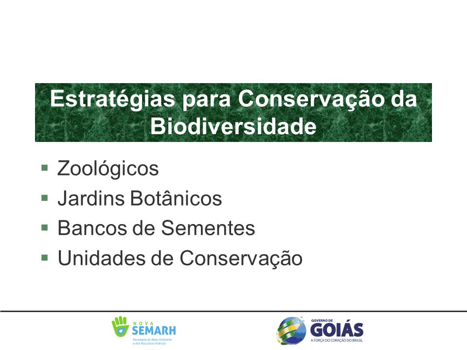 Estratégias para Conservação da Biodiversidade §Zoológicos §Jardins Botânicos §Bancos de Sementes §Unidades de Conservação