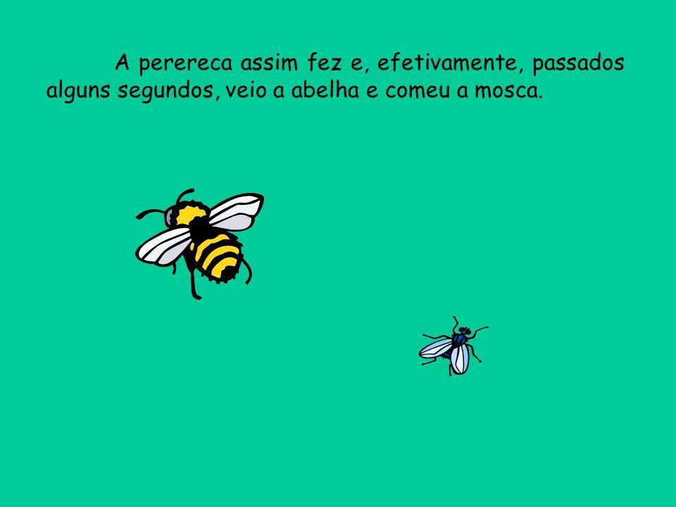 A perereca assim fez e, efetivamente, passados alguns segundos, veio a abelha e comeu a mosca.