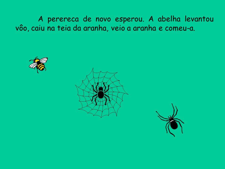 A perereca de novo esperou. A abelha levantou vôo, caiu na teia da aranha, veio a aranha e comeu-a.