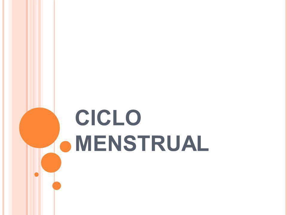 F ASES DO CICLO MENSTRUAL Fase folicular Fase ovulatória Fase lútea