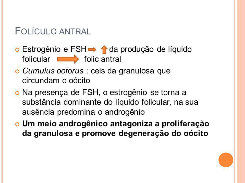 F OLÍCULO ANTRAL Estrogênio e FSH da produção de líquido folicular folic antral Cumulus ooforus : cels da granulosa que circundam o oócito Na presença