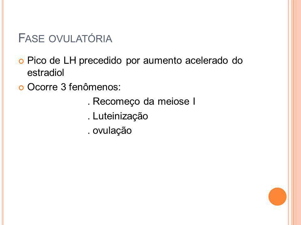 F ASE OVULATÓRIA Pico de LH precedido por aumento acelerado do estradiol Ocorre 3 fenômenos:. Recomeço da meiose I. Luteinização. ovulação