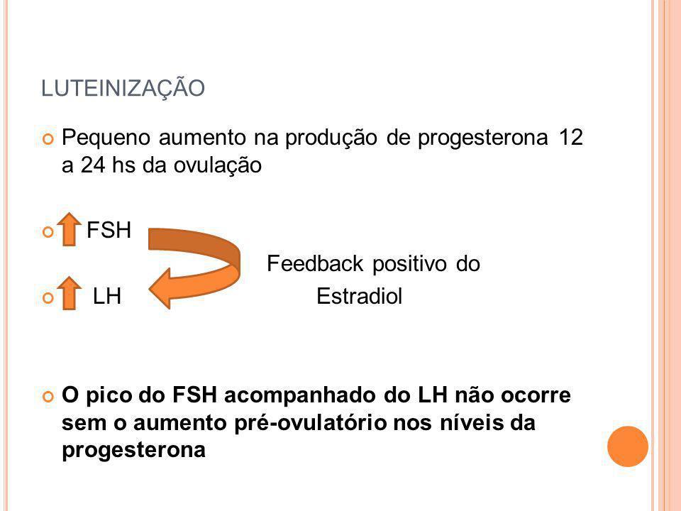 LUTEINIZAÇÃO Pequeno aumento na produção de progesterona 12 a 24 hs da ovulação FSH Feedback positivo do LH Estradiol O pico do FSH acompanhado do LH