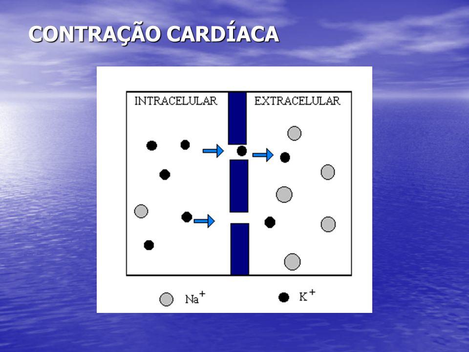 Interpretação Eletrocardiográfica •O eletrocardiograma pode revelar a presença de infra ou supradesnivelamento (angina de peito) do segmento ST e / ou inversão da onda T e/ou Q patológico.