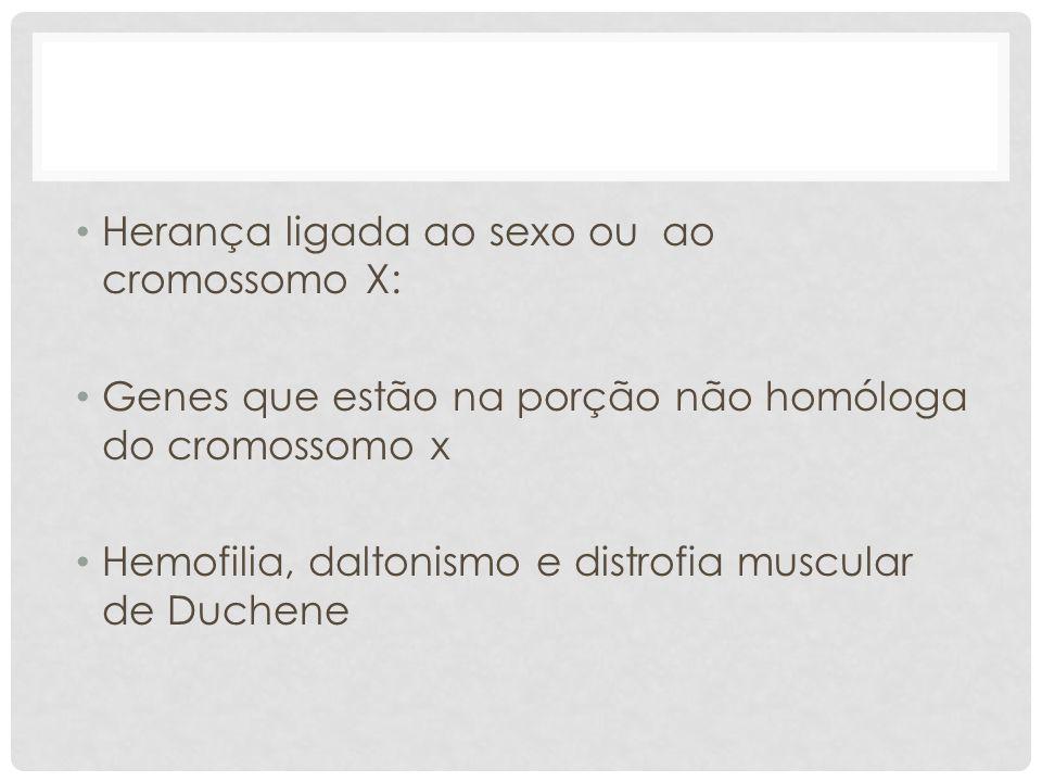 • Herança ligada ao sexo ou ao cromossomo X: • Genes que estão na porção não homóloga do cromossomo x • Hemofilia, daltonismo e distrofia muscular de