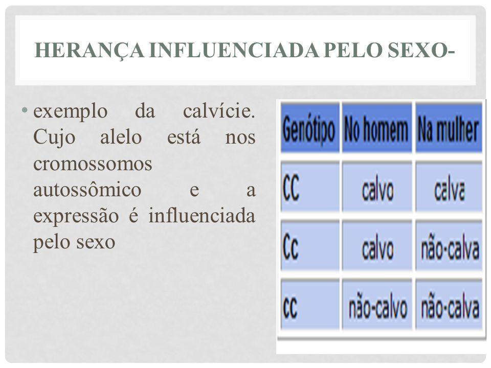 HERANÇA INFLUENCIADA PELO SEXO- • exemplo da calvície. Cujo alelo está nos cromossomos autossômico e a expressão é influenciada pelo sexo