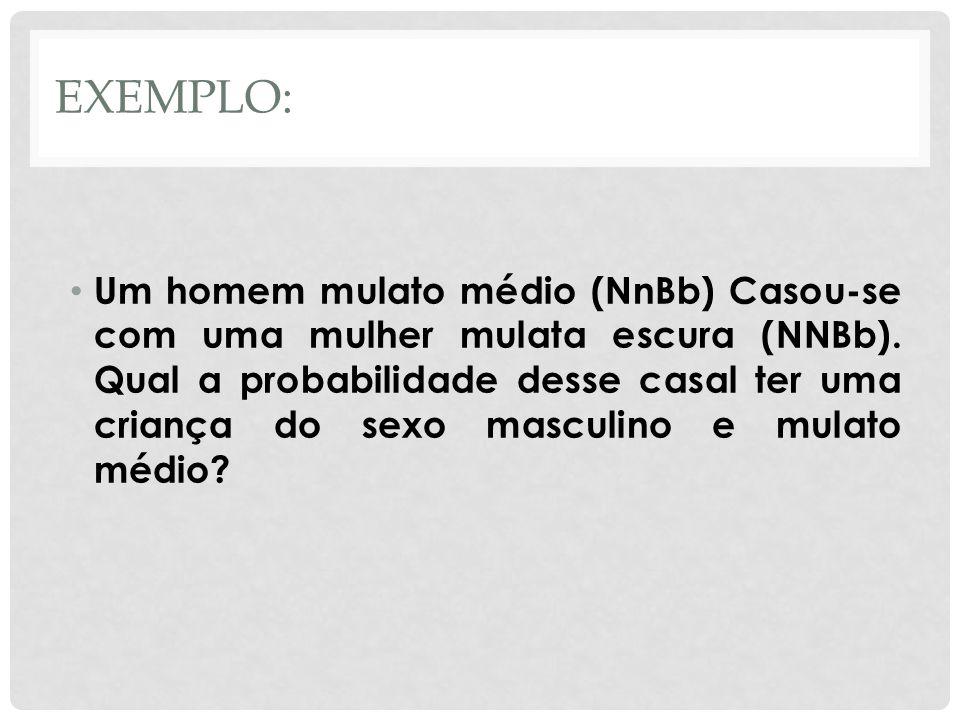 EXEMPLO: • Um homem mulato médio (NnBb) Casou-se com uma mulher mulata escura (NNBb). Qual a probabilidade desse casal ter uma criança do sexo masculi
