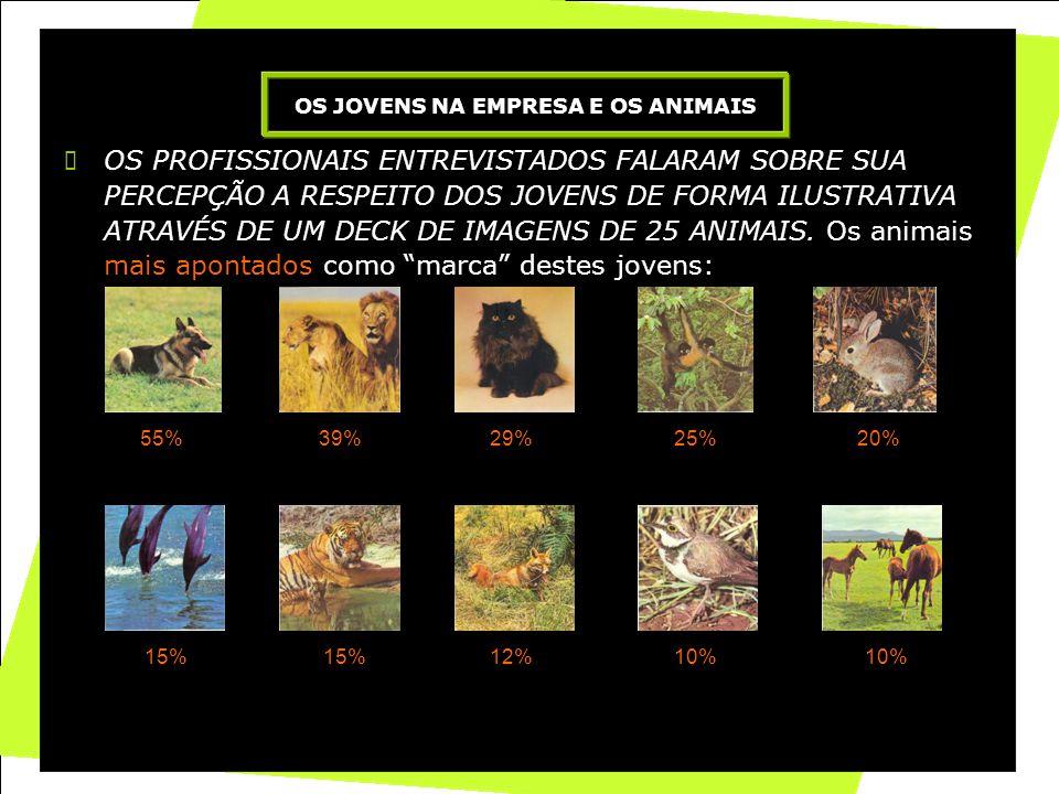 16 OS PROFISSIONAIS ENTREVISTADOS FALARAM SOBRE SUA PERCEPÇÃO A RESPEITO DOS JOVENS DE FORMA ILUSTRATIVA ATRAVÉS DE UM DECK DE IMAGENS DE 25 ANIMAIS.