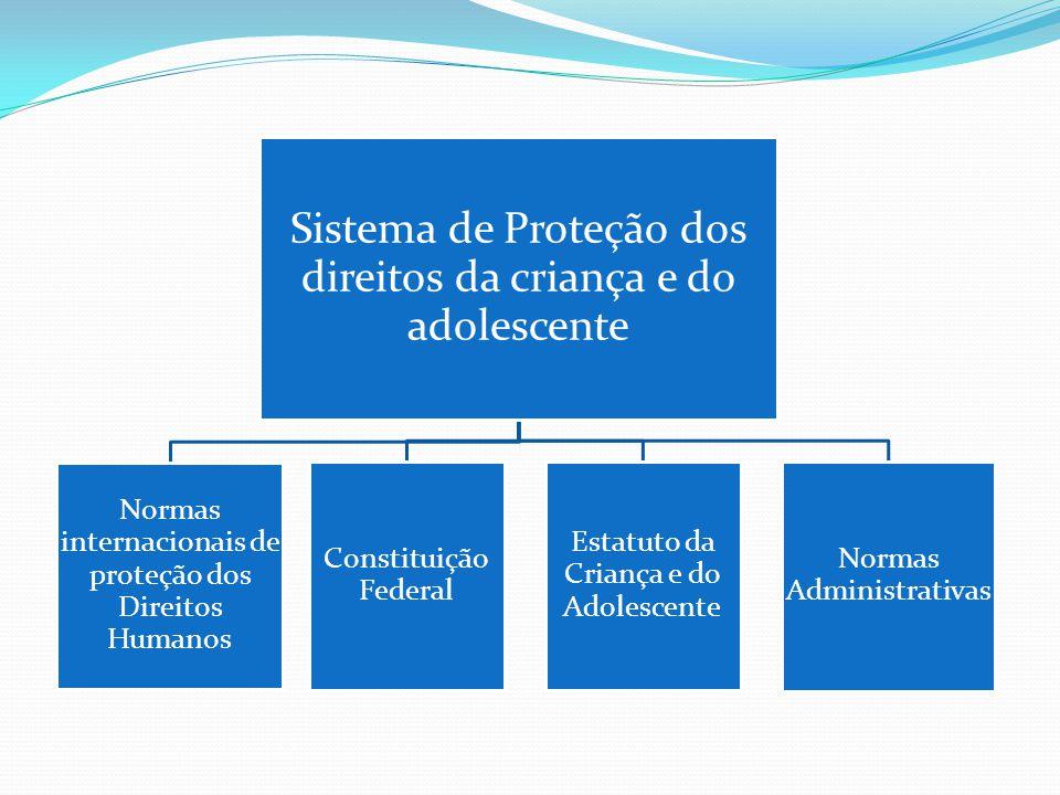 Sistema de Proteção dos direitos da criança e do adolescente Normas internacionais de proteção dos Direitos Humanos Constituição Federal Estatuto da Criança e do Adolescente Normas Administrativas