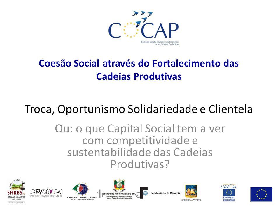 Coesão Social através do Fortalecimento das Cadeias Produtivas Troca, Oportunismo Solidariedade e Clientela Ou: o que Capital Social tem a ver com com