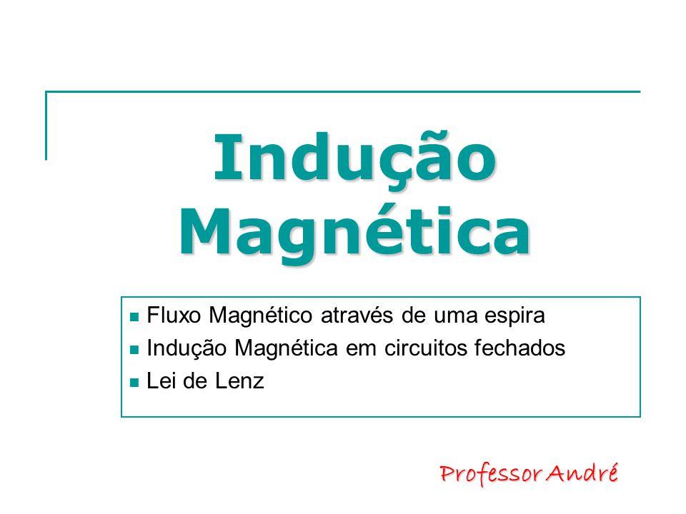 Indução Magnética  Fluxo Magnético através de uma espira  Indução Magnética em circuitos fechados  Lei de Lenz Professor André