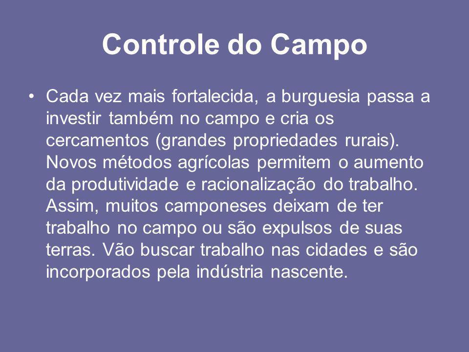 Controle do Campo •Cada vez mais fortalecida, a burguesia passa a investir também no campo e cria os cercamentos (grandes propriedades rurais). Novos