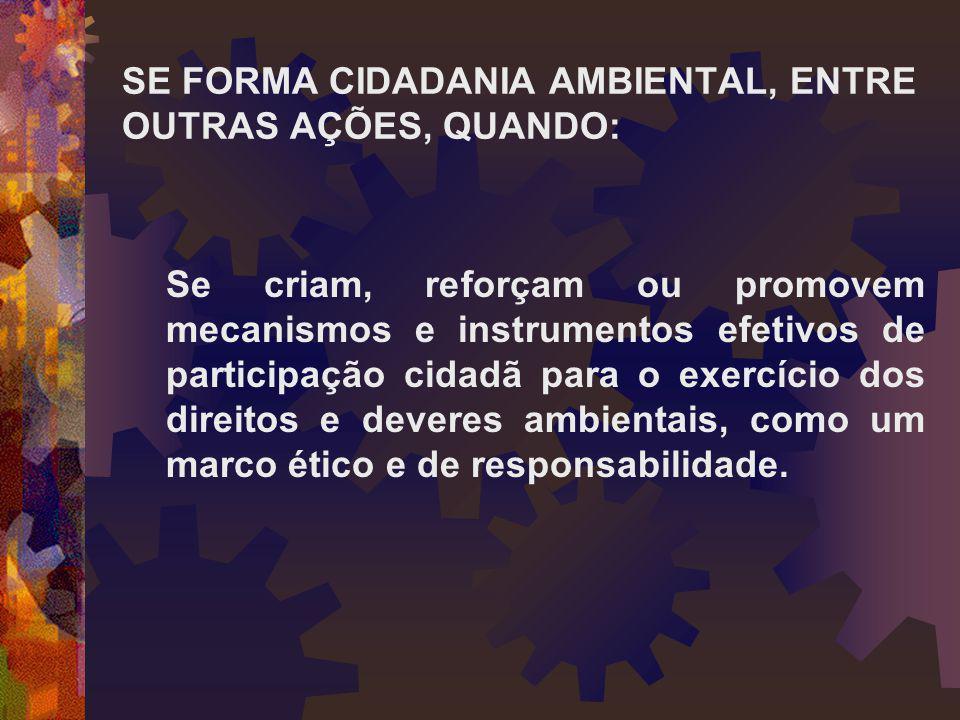 SE FORMA CIDADANIA AMBIENTAL, ENTRE OUTRAS AÇÕES, QUANDO: Se criam, reforçam ou promovem mecanismos e instrumentos efetivos de participação cidadã par