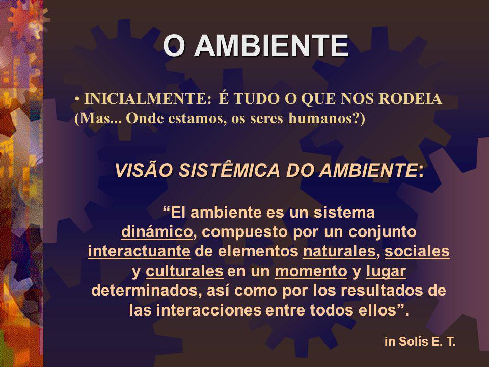 CIDADANIA AMBIENTAL GLOBAL E LOCAL  Os sêres humanos como cidadãos e cidadãs de um mesmo planeta, como uma comunidade, com uma causa comum.