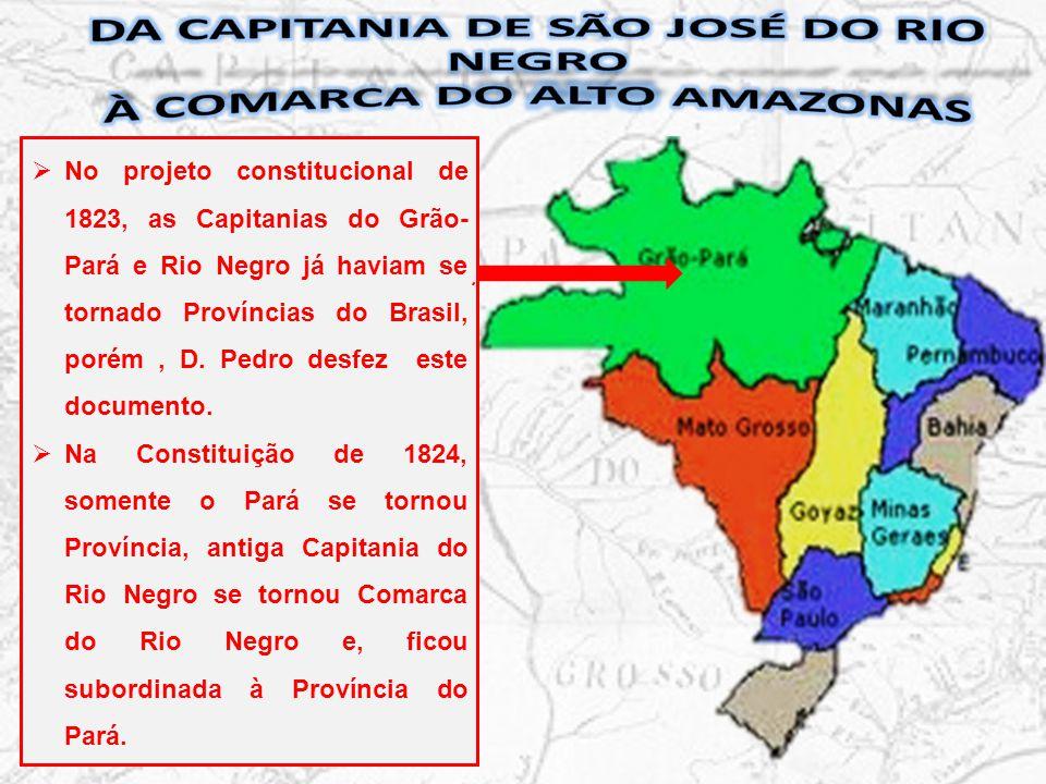 Província do Pará Comarca do Rio Negro