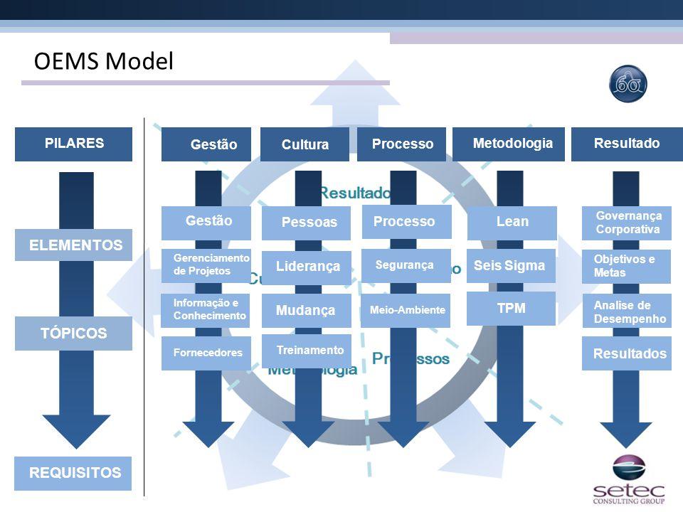 OEMS Model Gestão Processo Cultura Metodologia Gestão Processo Gerenciamento de Projetos Pessoas Segurança Seis Sigma PILARES ELEMENTOS TÓPICOS REQUIS