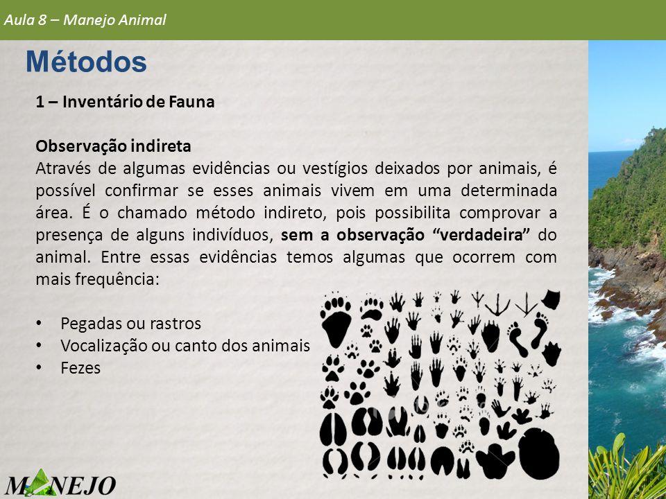 1 – Inventário de Fauna Observação indireta Através de algumas evidências ou vestígios deixados por animais, é possível confirmar se esses animais viv