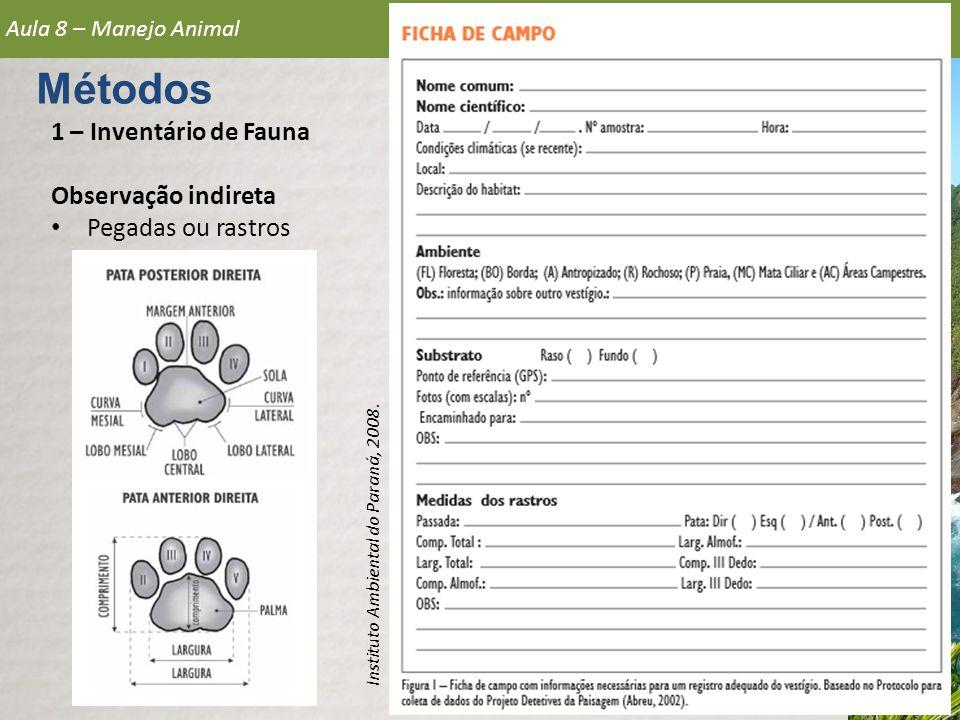 1 – Inventário de Fauna Observação indireta • Pegadas ou rastros Aula 8 – Manejo Animal Métodos Instituto Ambiental do Paraná, 2008.