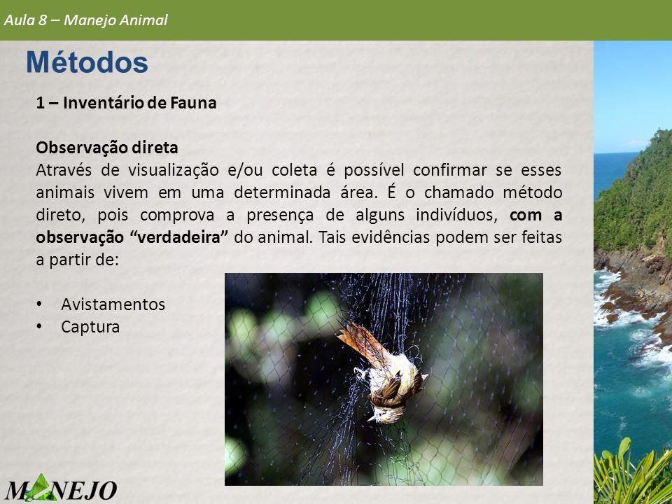 1 – Inventário de Fauna Observação direta Através de visualização e/ou coleta é possível confirmar se esses animais vivem em uma determinada área. É o