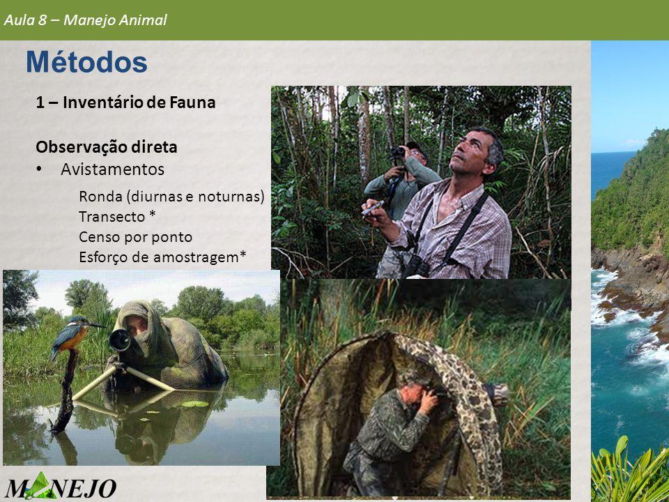 1 – Inventário de Fauna Observação direta • Avistamentos Aula 8 – Manejo Animal Métodos Ronda (diurnas e noturnas) Transecto * Censo por ponto Esforço