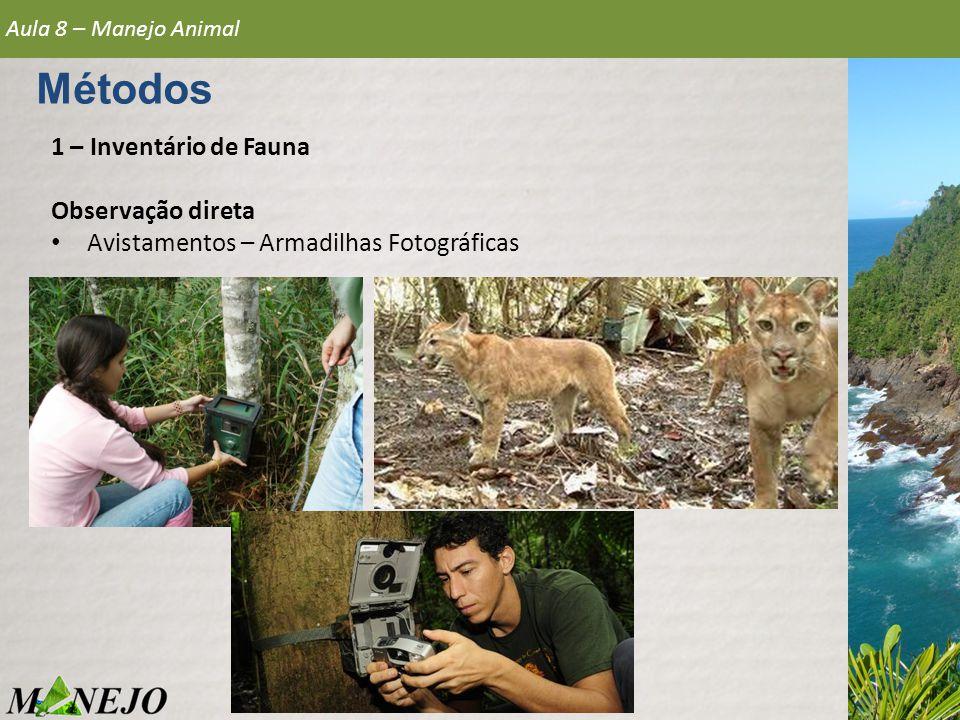 1 – Inventário de Fauna Observação direta • Avistamentos – Armadilhas Fotográficas Aula 8 – Manejo Animal Métodos