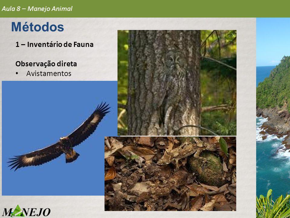 1 – Inventário de Fauna Observação direta • Avistamentos Aula 8 – Manejo Animal Métodos