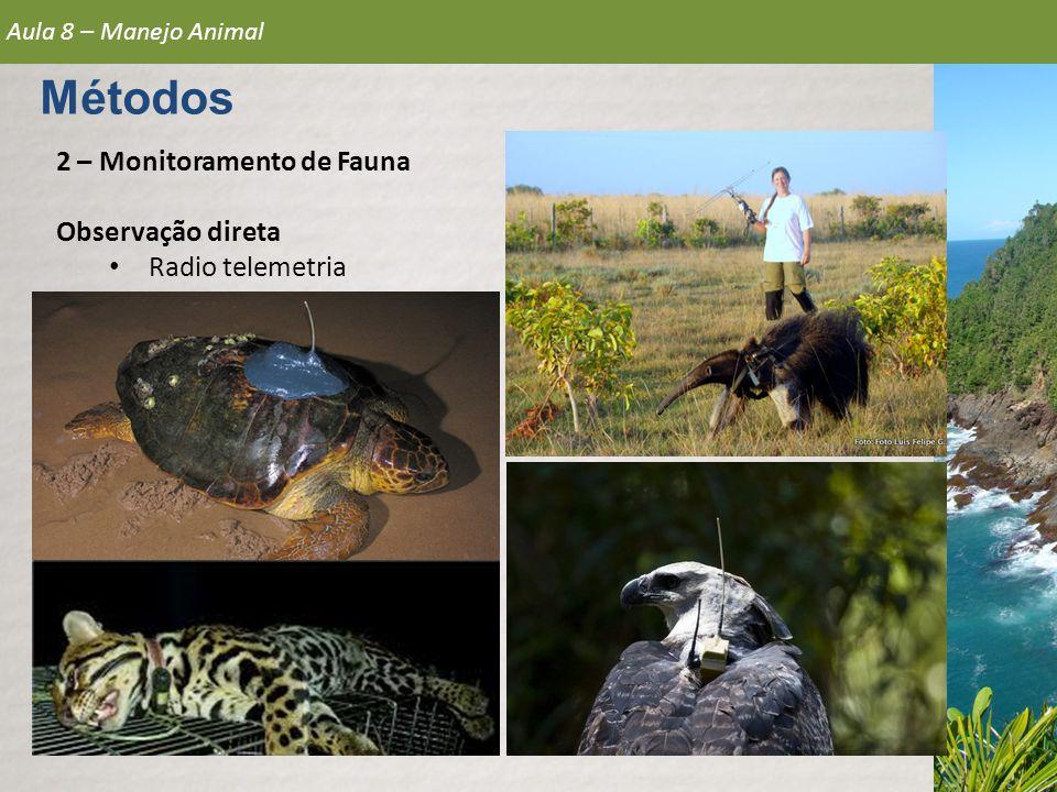 2 – Monitoramento de Fauna Observação direta • Radio telemetria Aula 8 – Manejo Animal Métodos