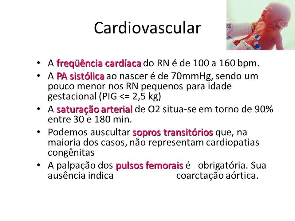 Cardiovascular freqüência cardíaca • A freqüência cardíaca do RN é de 100 a 160 bpm. PA sistólica • A PA sistólica ao nascer é de 70mmHg, sendo um pou