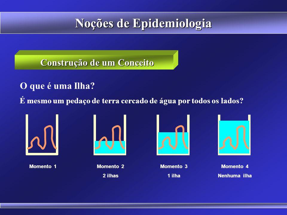 Noções de Epidemiologia O que é uma Ilha.
