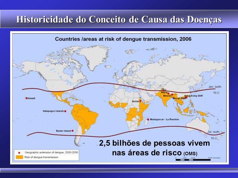 Historicidade do Conceito de Causa das Doenças DENGUE Causa Biológica x Causa Social Aedes aegypti