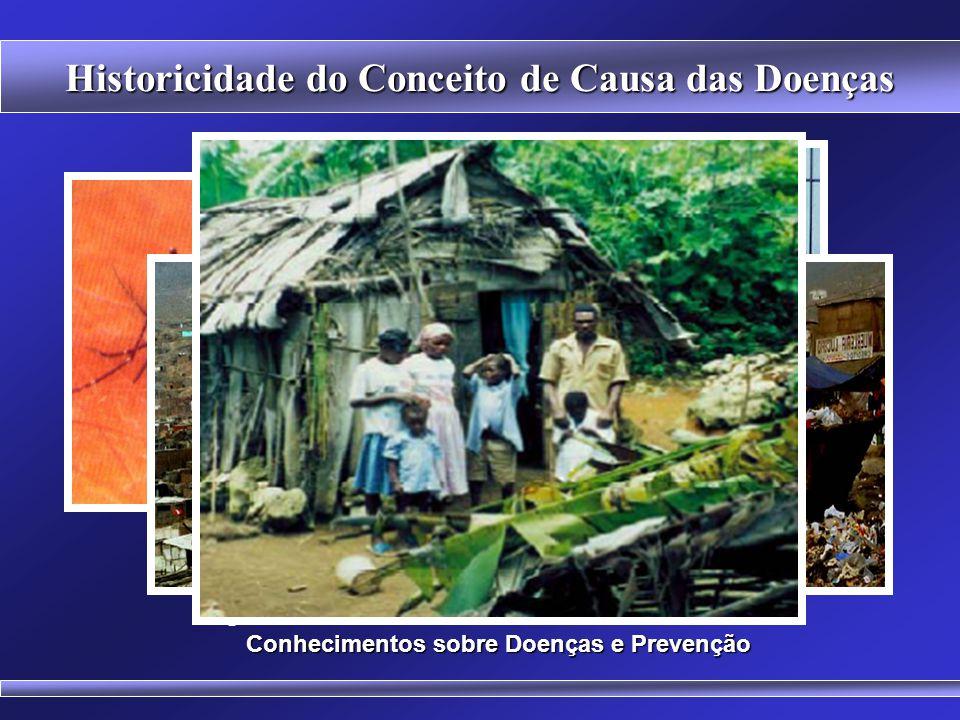Historicidade do Conceito de Causa das Doenças Ainda não há vacinas disponíveis para a Dengue. Larvas e pupa do mosquito Aedes aegypti