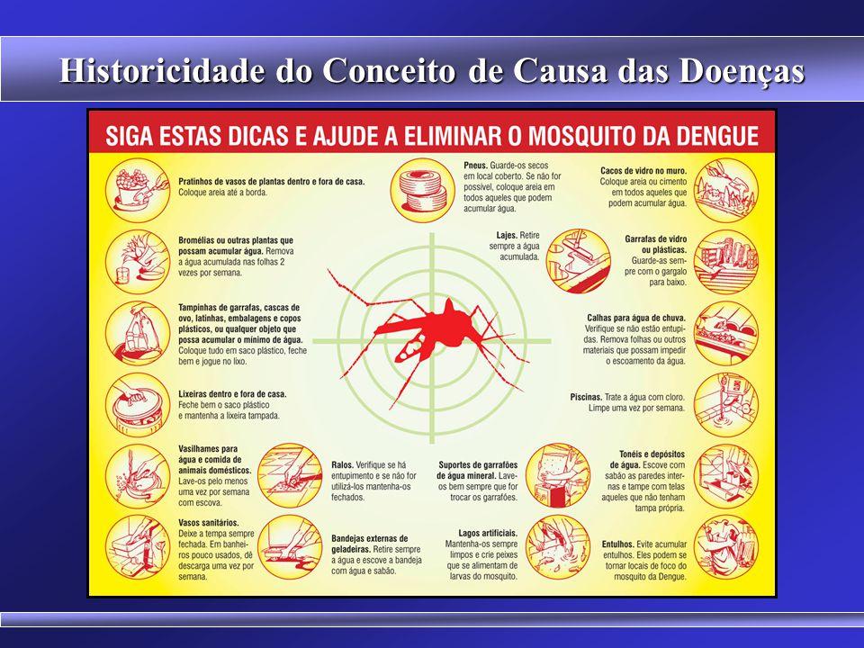 Historicidade do Conceito de Causa das Doenças Mosquito Aglomeração Urbana Abastecimento de Água Coleta de Lixo Conhecimentos sobre Doenças e Prevençã