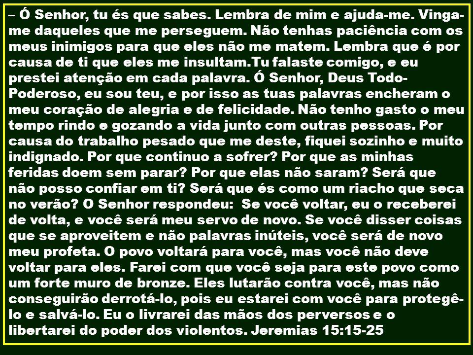 – Ó Senhor, tu és que sabes. Lembra de mim e ajuda-me. Vinga- me daqueles que me perseguem. Não tenhas paciência com os meus inimigos para que eles nã