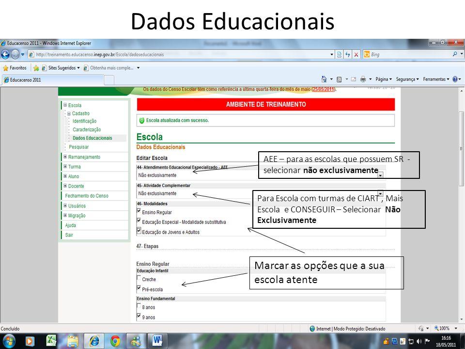 Dados Educacionais AEE – para as escolas que possuem SR - selecionar não exclusivamente Para Escola com turmas de CIART, Mais Escola e CONSEGUIR – Sel