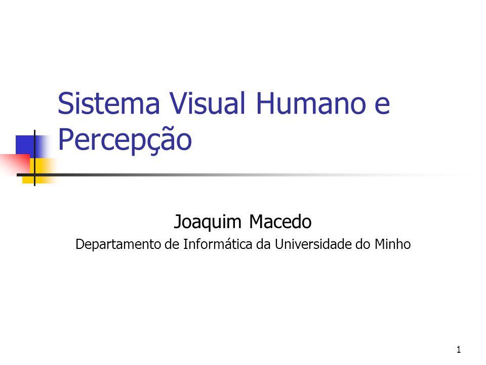 1 Sistema Visual Humano e Percepção Joaquim Macedo Departamento de Informática da Universidade do Minho