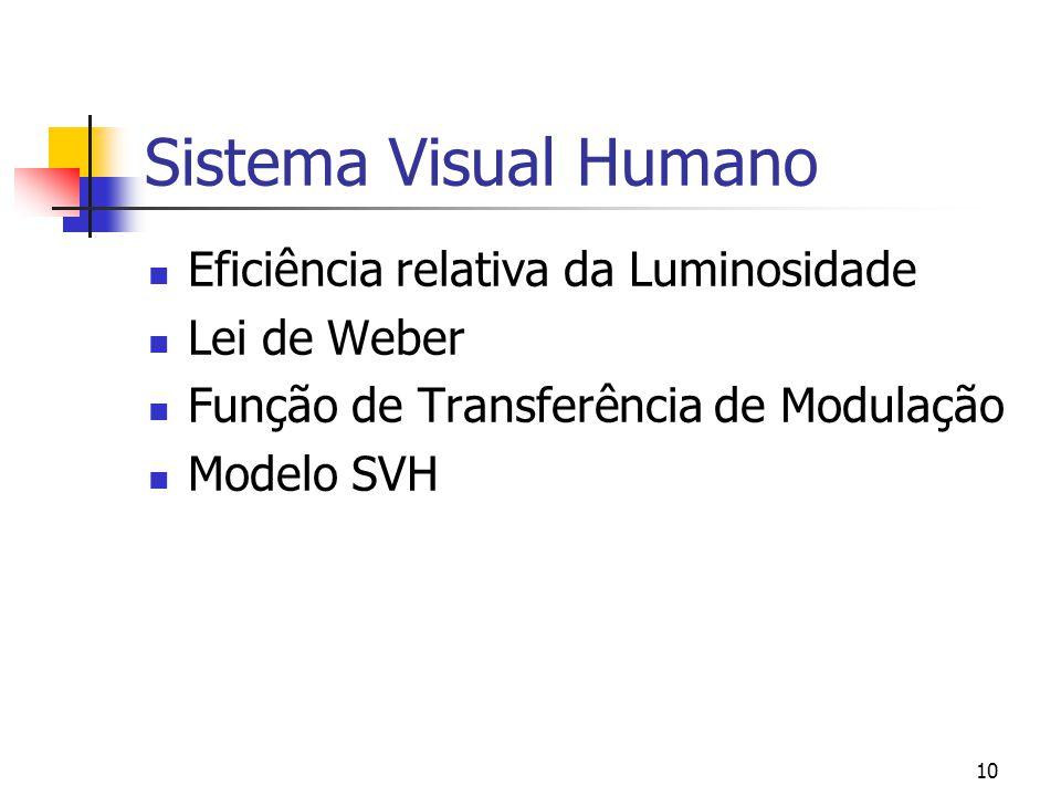 9 Sistema Visual Humano