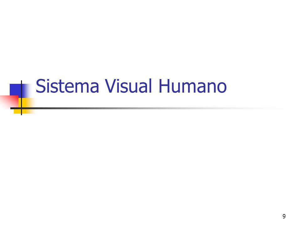 19 Sistema Visual Humano Formação de Imagem Controlo de Exposição Detecção Processamento •Córnea •lente •Íris/pupila •Photoreceptor sensitivity •Retina •Bastonetes •Cones •Cérebro